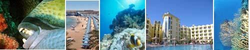 kerasub diving
