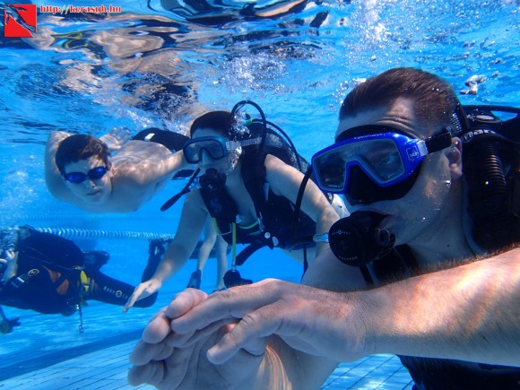 introdive, family dive